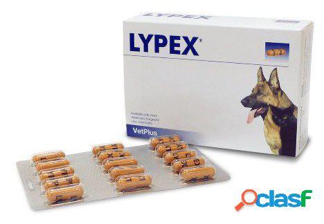 Vetplus blister lypex suplemento 60 cápsulas