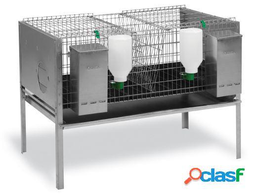 Gaun gaiola para coelhos 2 departamentos. modelo da europa.