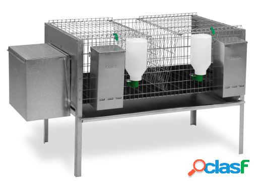 Gaun modelo dos coelhos da gaiola europa 1 nido, 1 departamento.