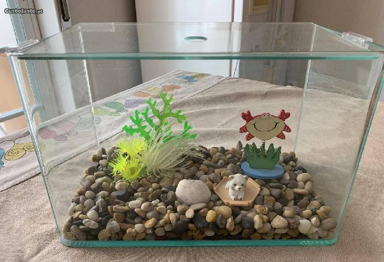 Aquário para peixes decorado