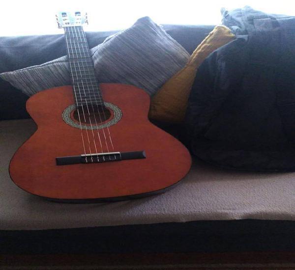 Viola acústica