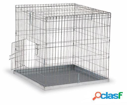 Gaun gaiola exposição média aves 80 x 80 mm