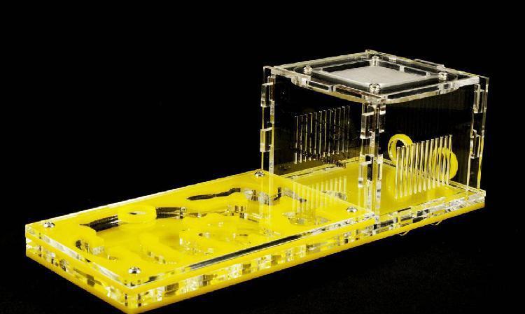 Kit formigueiro didático - cor amarela