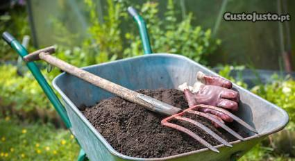 Limpeza e manutençao de jardins
