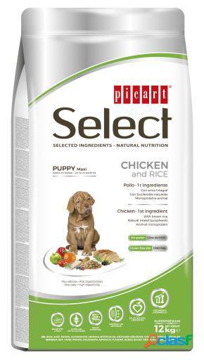 Picart select puppy maxi frango e arroz 15 kg