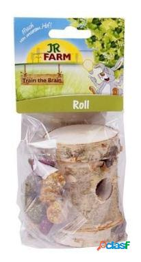 Jr farm trem cérebro snacks roedores rolo 100 gr