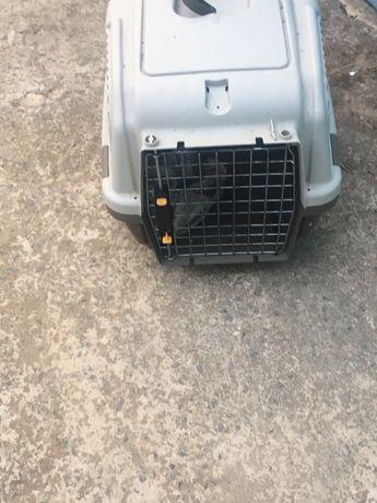 Caixa transportadora cães porte médio