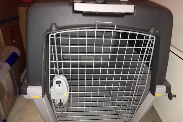 Transportadora para animais de porte grande