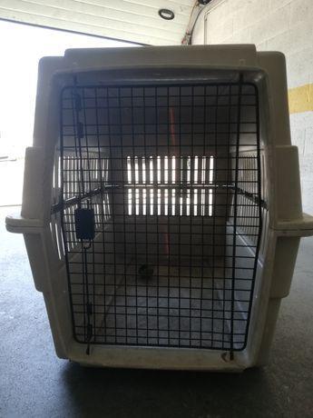 Caixa transportadora cães