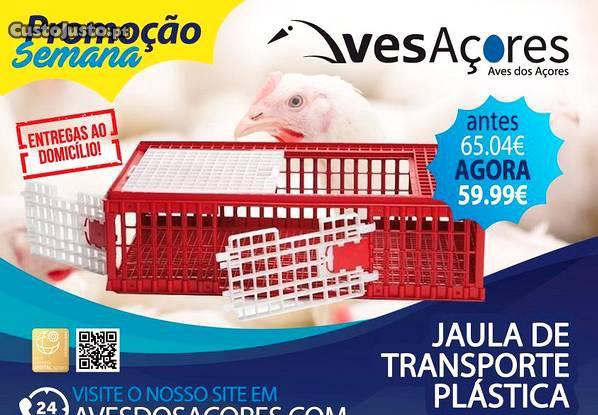 Caixa de transporte aves e coelhos com 3 portas