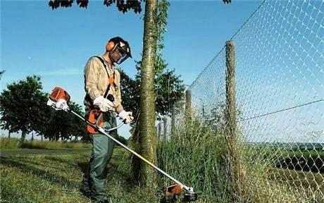 Jardinagem, limpeza de terrenos e poda de árvores