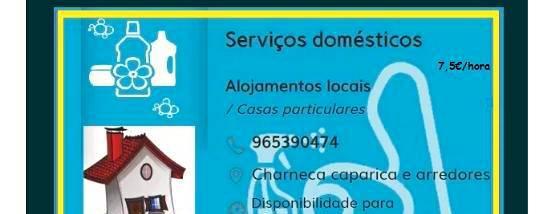 Serviços domesticos + apoio a idosos
