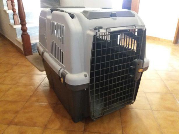 Transportadora grande para cão