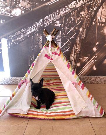 Cama tenda para animais