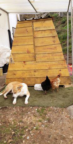 Novo!!! galinheiro capoeira abrigo casota galinhas perdizes