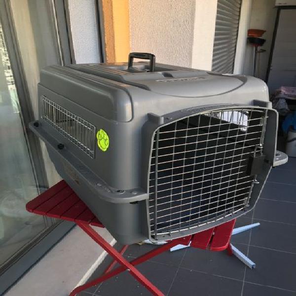 Petmate sky kennel ultrapet carrier