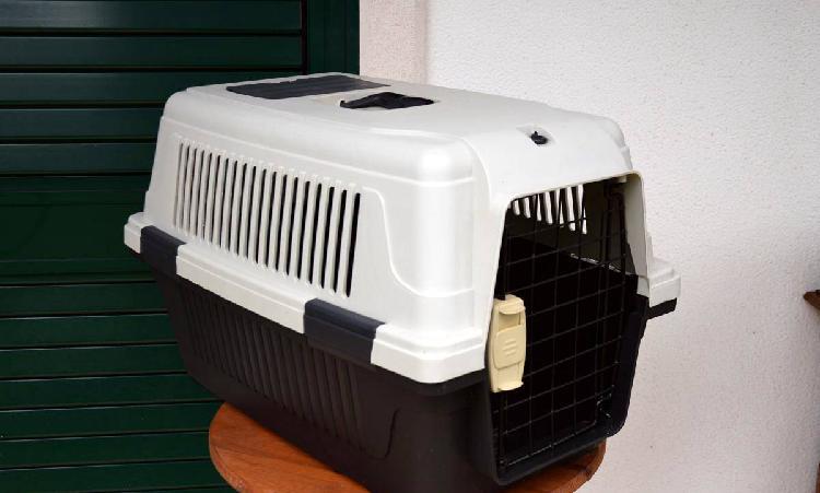 Mala transporte animais cão gato