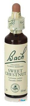 Original flower essences bach 30 sweet chestnut 20 ml