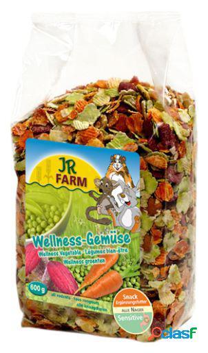 Wellness verduras 600 gr jr farm