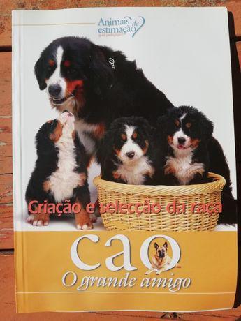 Animais estimação-guia pedagógico- cãescriação e