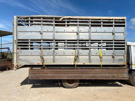 Caixa transporte animais vivos