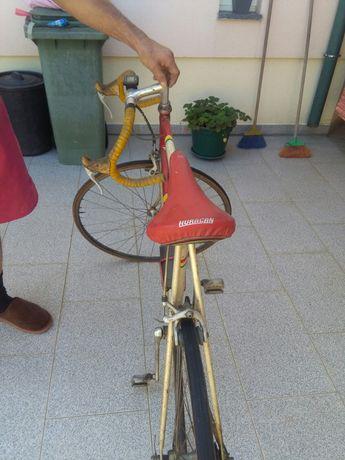 Bicicleta desporto