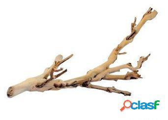 Ramos naturais forest branch 60 cm exo terra