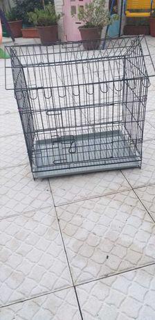 Jaula para animais em recuperação ou transporte