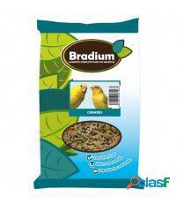 Bradium canario aproximadamente 910 gr. 910 gr bradium
