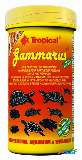 Gammarus 250 ml tropical