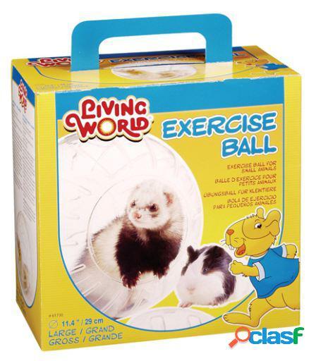 Exercício bola lw para furões, grande living world