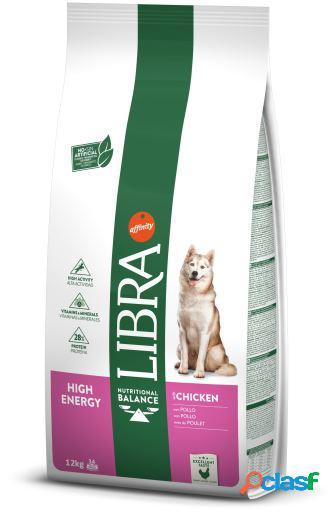 High energy 12 kg libra dog